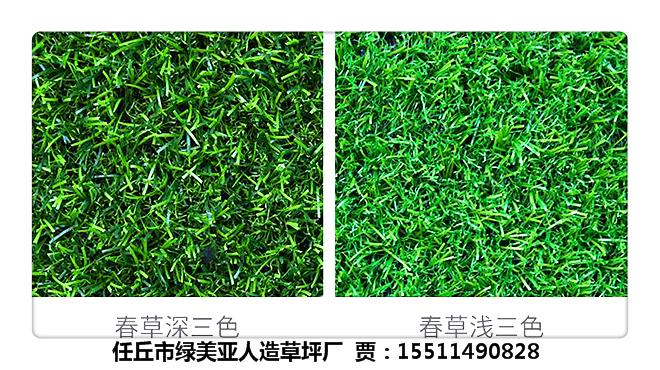 太原市室内塑料绿草坪《15511490828》欢迎咨询