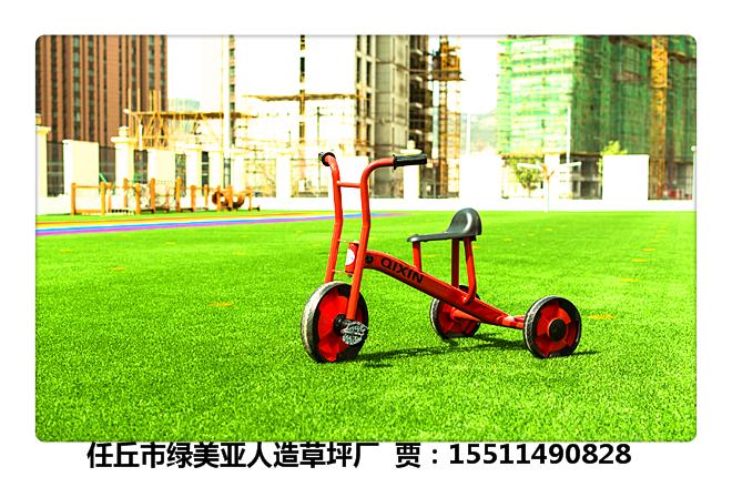 青神县公园草坪《15511490828》供应商